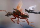 Homem-Formiga e a Vespa é o filme mais gostoso do MCU
